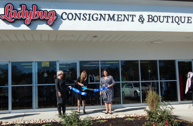 Ladybug Consignment and Boutique